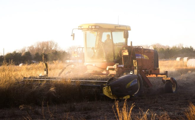 Beginning a new farming venture can be an intimidating move, but a resource from UT Extension hopes to ease the transition into agriculture for those new to the industry.