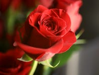Roses are shown at Encke Flowers, in Teaneck. Wednesday, Feb. 10, 2021