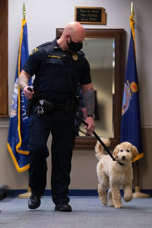 Walking beside handler Lt. Matt Danielson, Gracie, a 5-month-old Goldendoodle therapy dog for the Topeka Police Department, helps ease tensions and provide a friendly face for officers and the public.
