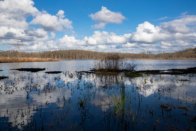 Lake Lafayette