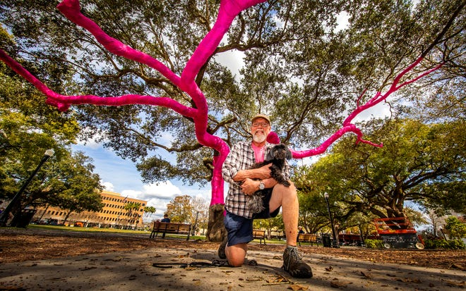 Artist David Collins holds his dog, Rudy, under a centuries-old oak wrapped in hot-pink fabric in downtown Lakeland's Munn Park. The project, coincidentally timed to Lakeland's downtown Valentine's weekend events, has been planned for some time and was delayed by COVID-19.