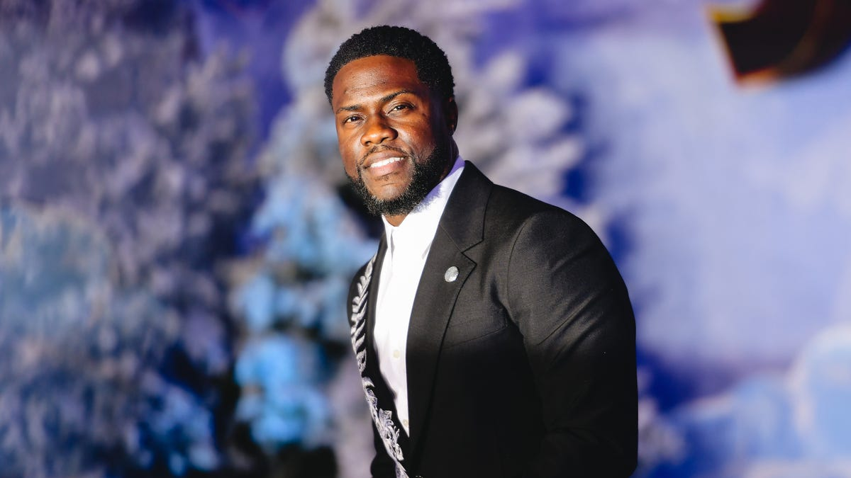 Image result for Actor Kevin Hart's personal shopper charged with stealing $1m
