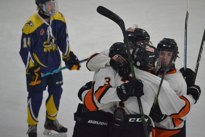Cheboygan players celebrate a goal scored by sophomore Carson Bigger (3) during the second period of a Northern Michigan Hockey League tournament matchup against the Lakeshore Badgers at Ralph G. Cantile Arena on Saturday.