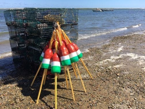 Lobster and clam industries were hard hit by the pandemic. Pictured, traps at Nauset Harbor, Orleans.