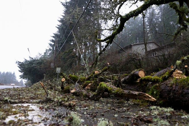 Downed trees cover a utility line on Sunnyside Rd SE.  PGE officials could not provide an estimate for when service would be restored in Salem.