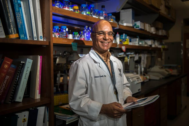 Dr. Ahmed Chadli, an associate professor of medicine at Georgia Cancer Center at Augusta University, recently got a $1.8 million grant from the National Cancer Institute to look at a compound that is derived from a fungus found on the roots of some plants in his native Morocco.