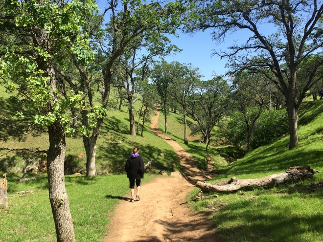 Spouse Susan ascending the Hardy Canyon Trail in Round Valley Regional Preserve.