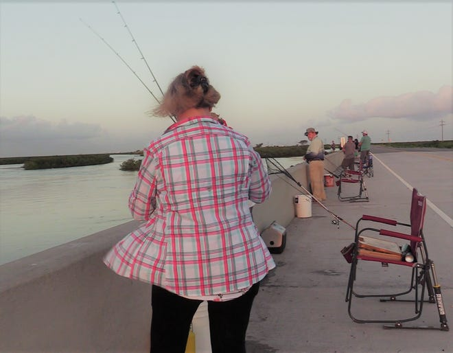 A group of excited anglers fishing on one of the bridges along La 1 before Grand Isle.
