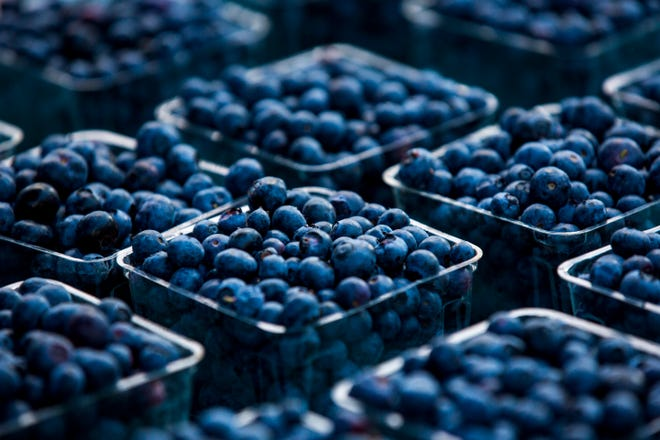 Blueberries sit in packages for sale from at a farmers' market in Gainesville.
