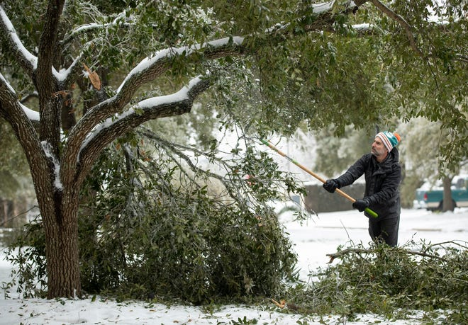 David Tishgart knocks ice off a tree at his home on Rhett Butler Drive in the Circle C Ranch neighborhood in Southwest Austin on February 17.