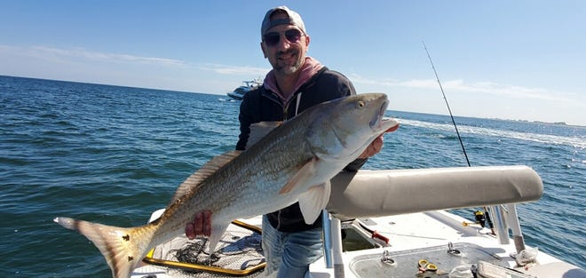 Steve Musech caught this redfish in the inlet with Capt. Fred Roberts.