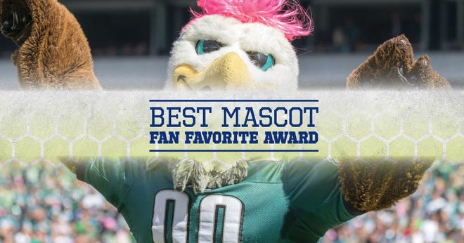 The winner of the Snyder Heating & Air Best Mascot Fan Favorite Award will be announced June 28 during the Greater Jacksonville High School Sports awards show.