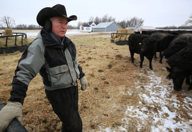 Brad Rayl, who owns Rayl Angus Ranch, talks about his registered Angus cattle at the ranch south of Buhler.