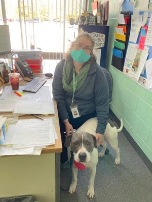 Jessica Merriam, principal of Simonian Center for Early Learning, with her therapy dog, Valley.