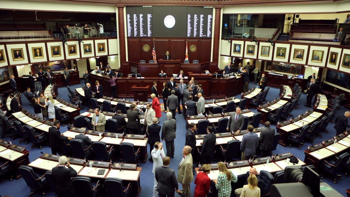 Point of View: Florida's anti-protest bill is actually anti-American 2