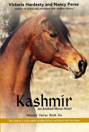 """The cover of """"Wonder Horse"""" book six, """"Kashmir,"""" by Victoria Hardesty and Nancy Perez."""