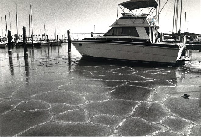 Boats were surrounded by ice when the water in the Corpus Christi Marina froze in late December 1983.