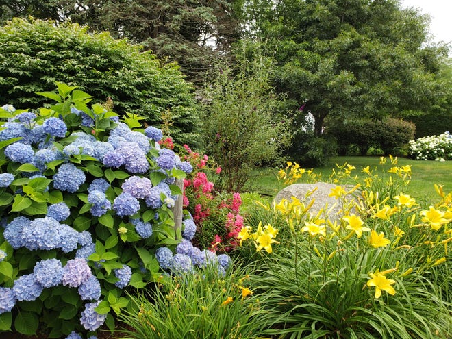 In the current weather patterns, gardeners need to start applying both new and old tricks to get the most out of our gardens.