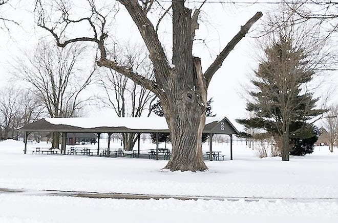 North Park is a location idea for a disc golf course that was proposed at the Fairbury City Council meeting Wednesday.