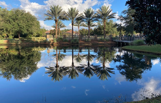The pond just inside the entrance gates at Del Webb Ponte Vedra in Nocatee.
