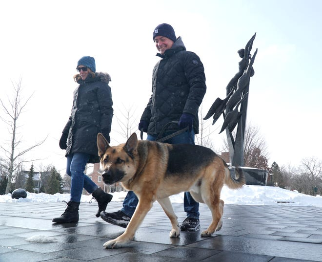 A Livonia ordinance change could require dog owners to always use a leash on walks.