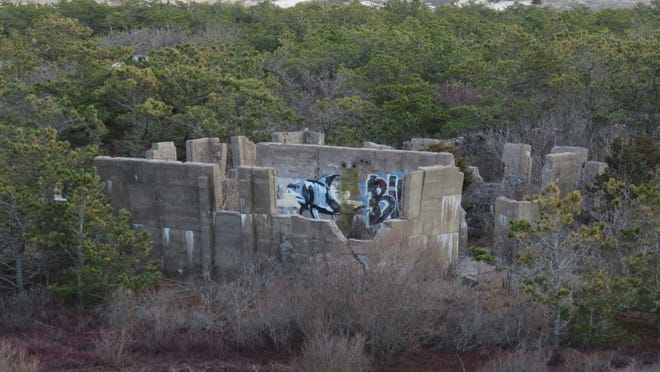 Ghostly ruins surrounded by pines and dunes in the Province Lands. What's the deal with that?
