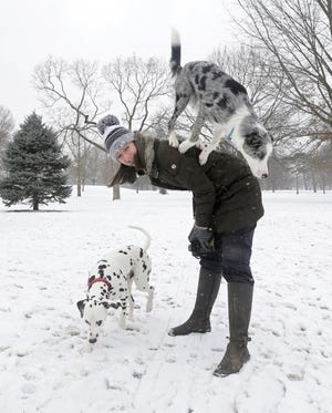 February's cold weather didn't slow down border collie Apollo, top, and Dalmatian puppy Otto, who showed off tricks in the snow at Schiller Park with their owner, Lexi Blaes, of German Village.