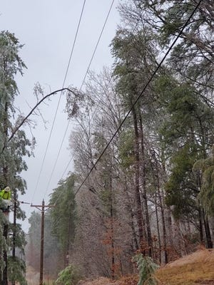 A tree limb falls on a power line following freezing rain on Thursday, Feb. 18.