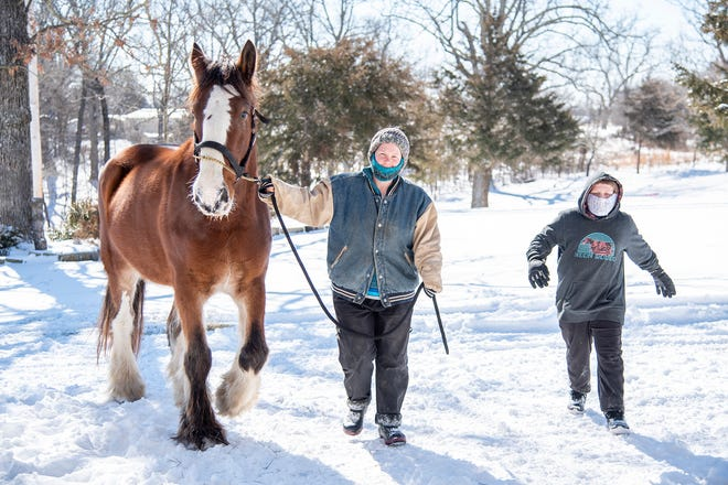 Sarah Fields, center, and her son escort a Clydesdale horse into the ranch's stable to warm up.