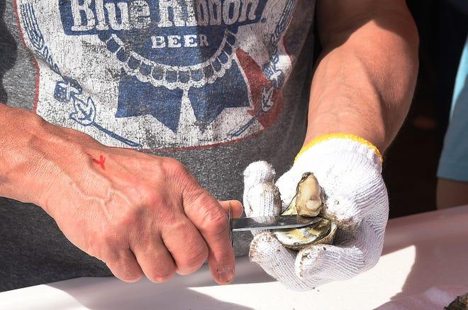 Πυροβολώντας στρείδια στο NC Oyster Festival. [STARNEWS FILE PHOTO]