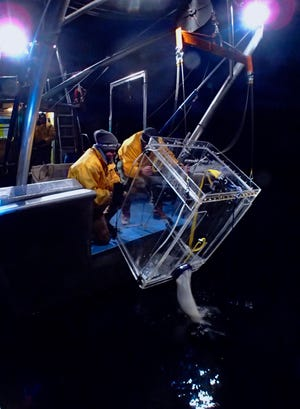 Scientists from UC Davis' Tahoe Environmental Research Center night trawl for Mysis shrimp.