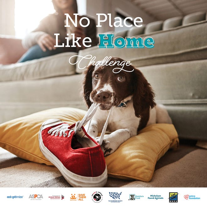 No Place Like Home Challenge