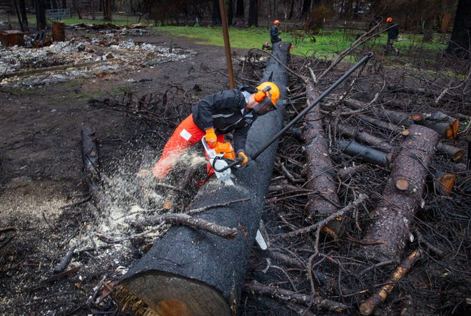 Luke Rector, a firefighter with North Bend Fire who volunteers with Reach Out World Wide, works to clear fallen trees from property in Blue River.