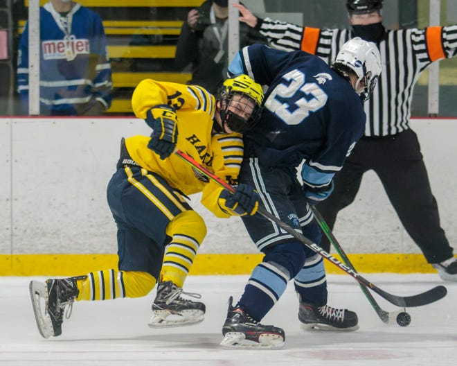 Hartland's Nick Halonen (13) crashes into Livonia Stevenson's Nick Justice (23) during the Eagles' 5-1 victory over Livonia Stevenson on Saturday, Feb. 20, 2021 at Hartland Sports Center.