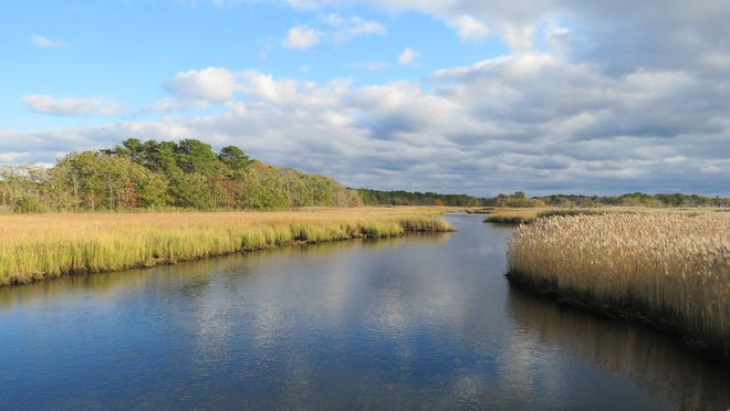 HARWICH--A peaceful vista at the Bell's Neck Conservation Lands.