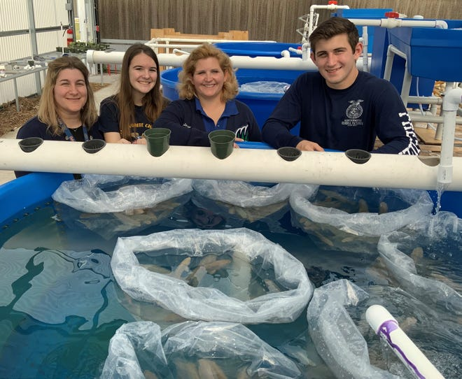 Students and a teacher participated in an aquaculture program at Windermere High School before the COVID-19 restrictions were put  in place. (Courtesy UF/IFAS)