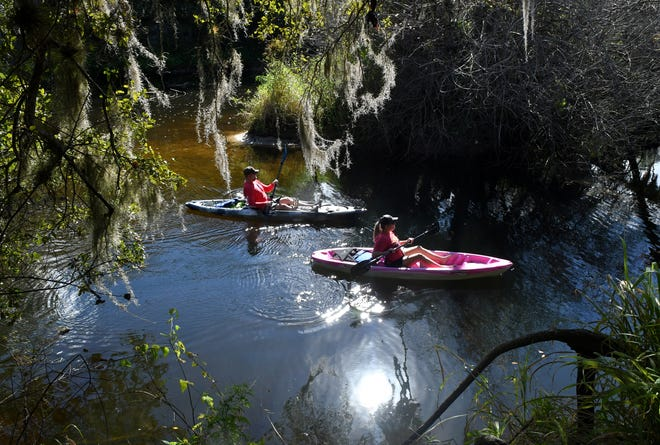 Turkey Creek Sanctuary is located off of Port Malabar Blvd. NE, in Palm Bay, Fl. This 130-acre nature preserve includes boardwalk nature trails, jogging paths, and access by canoe and kayak. It is open 7 days a week from dawn until dusk.