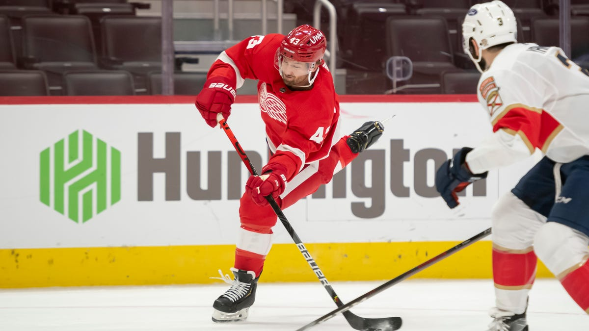 Red Wings' Darren Helm moves into larger role as health improves 2