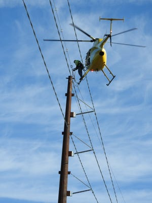 Diverters placed on high voltage transmission lines help to increase visibility of the wires and help protectbirdsfrom contacting the transmission lines while in flight.
