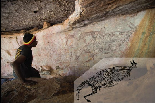 Ian Waina inspects a painting of a kangaroo, determined to be about 17,300 years old based on the age of overlying mud wasp nests. The inset is an illustration of the painting above it.