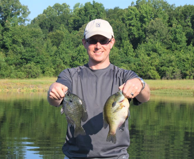 The bream in this picture is what one might catch in early spring as they get ready to spawn.