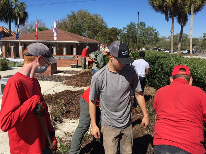 Scouts from Scouts BSA Troop 72 of Ocala and volunteers with the Ocala-Marion County Veterans Memorial Park spent part of last Saturday spreading fresh mulch at the park.