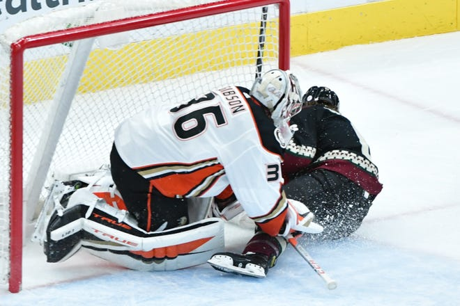 Feb 22, 2021; Glendale, Arizona, USA; Arizona Coyotes defenseman Jakob Chychrun (6) scores a goal as he crashes into Anaheim Ducks goaltender John Gibson (36) during the second period at Gila River Arena. Mandatory Credit: Matt Kartozian-USA TODAY Sports
