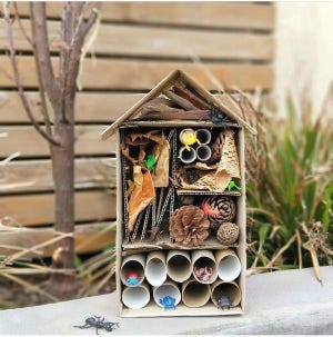 """Students will get the opportunity to build a Bug Hotel in the virtual presentation """"Flying Friends and Foes,"""" one of the many sessions being offered through the upcoming Mineral County Virtual STEM Festival, Saturday, March 13. To register for this free event, visit mineralstem.com/register."""