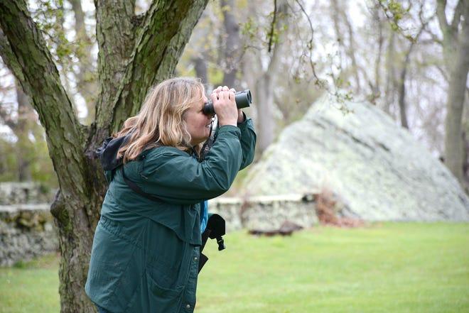Lauren Parmelee, Audubon's senior director of education, is leading the Sunday birdwalks.