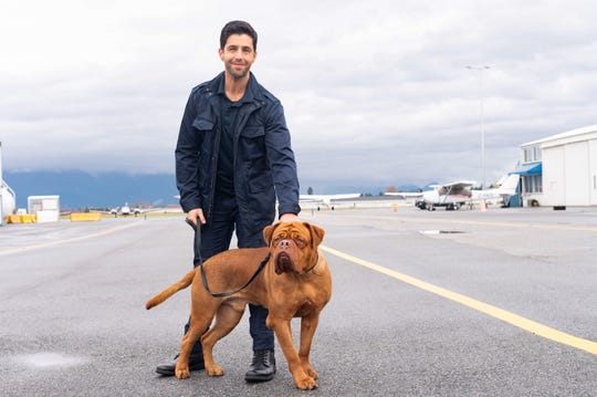 "Josh Peck and his canine co-star for ""Turner & Hooch."""