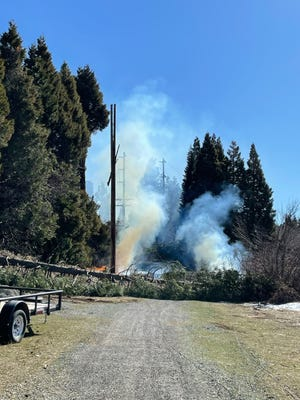 A seemingly healthy looking tree gave way Feb. 25, 2021 just as Tom Hesseldenz and others were working in the area on a fuels reduction project.