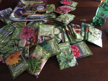 The Friends of Adams Farm will sponsor a Seed Swap in the pavilion at Adams Farm, 999 North St., Walpole, featuring vegetable, herb and flower seeds.