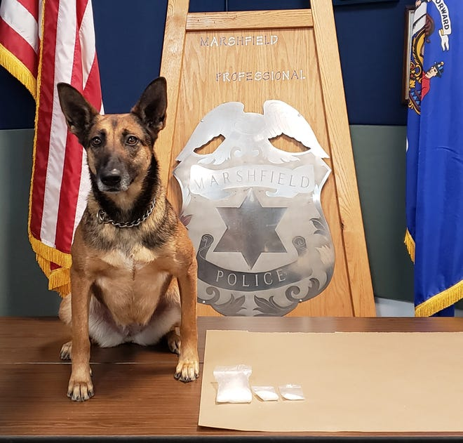 Marshfield K-9 Rika helped officers find about $9,000 worth of suspected methamphetamine early Thursday, Feb. 25, 2021, in Marshfield.