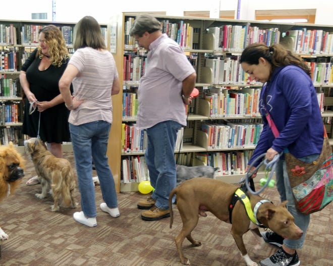 Families line up for a professional photo shoot for their pets during the 2018 Pet Pfest at the Pflugerville Public Libary. This year's event during  spring break will be virtual.